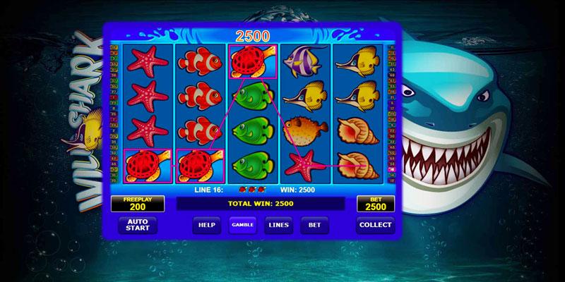 Wild Shark Slots